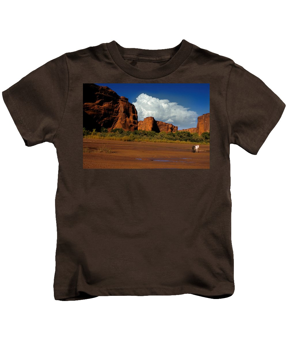 Horses Kids T-Shirt featuring the photograph Indian Ponies In The Canyon by Jerry McElroy