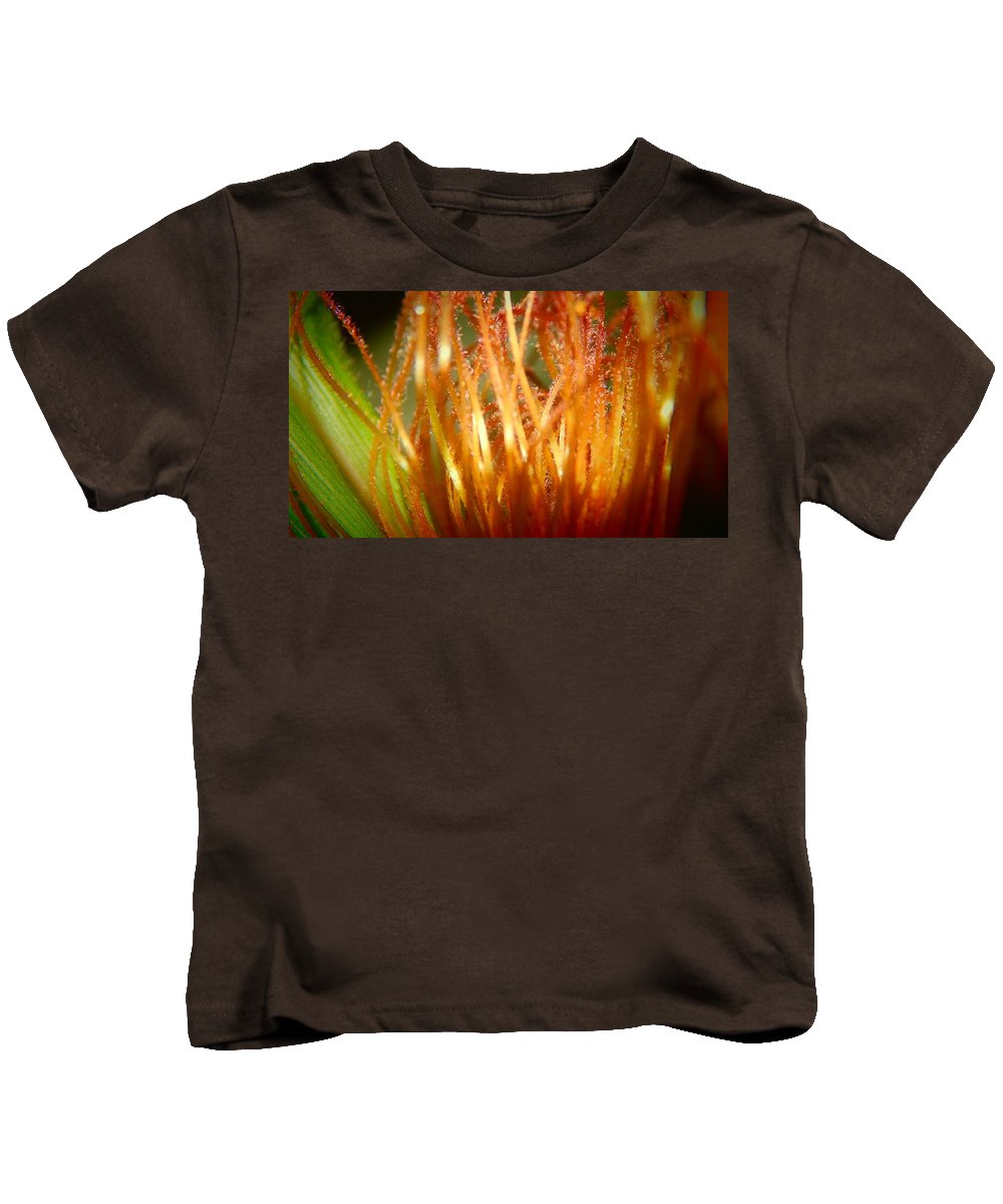 Farm Food Kids T-Shirt featuring the pyrography Korn by Shannon Ghanavati