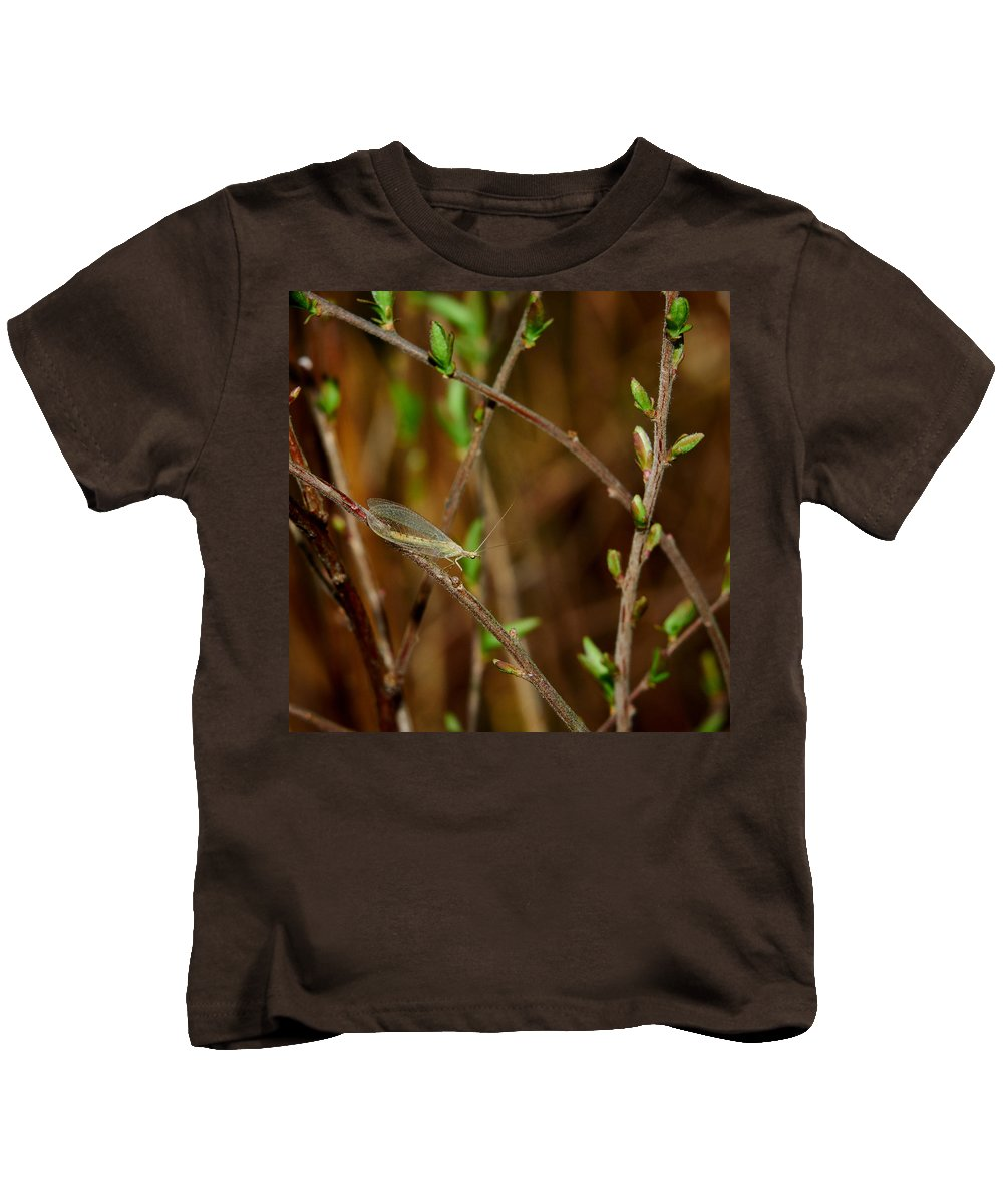 Finland Kids T-Shirt featuring the photograph Lacewing by Jouko Lehto