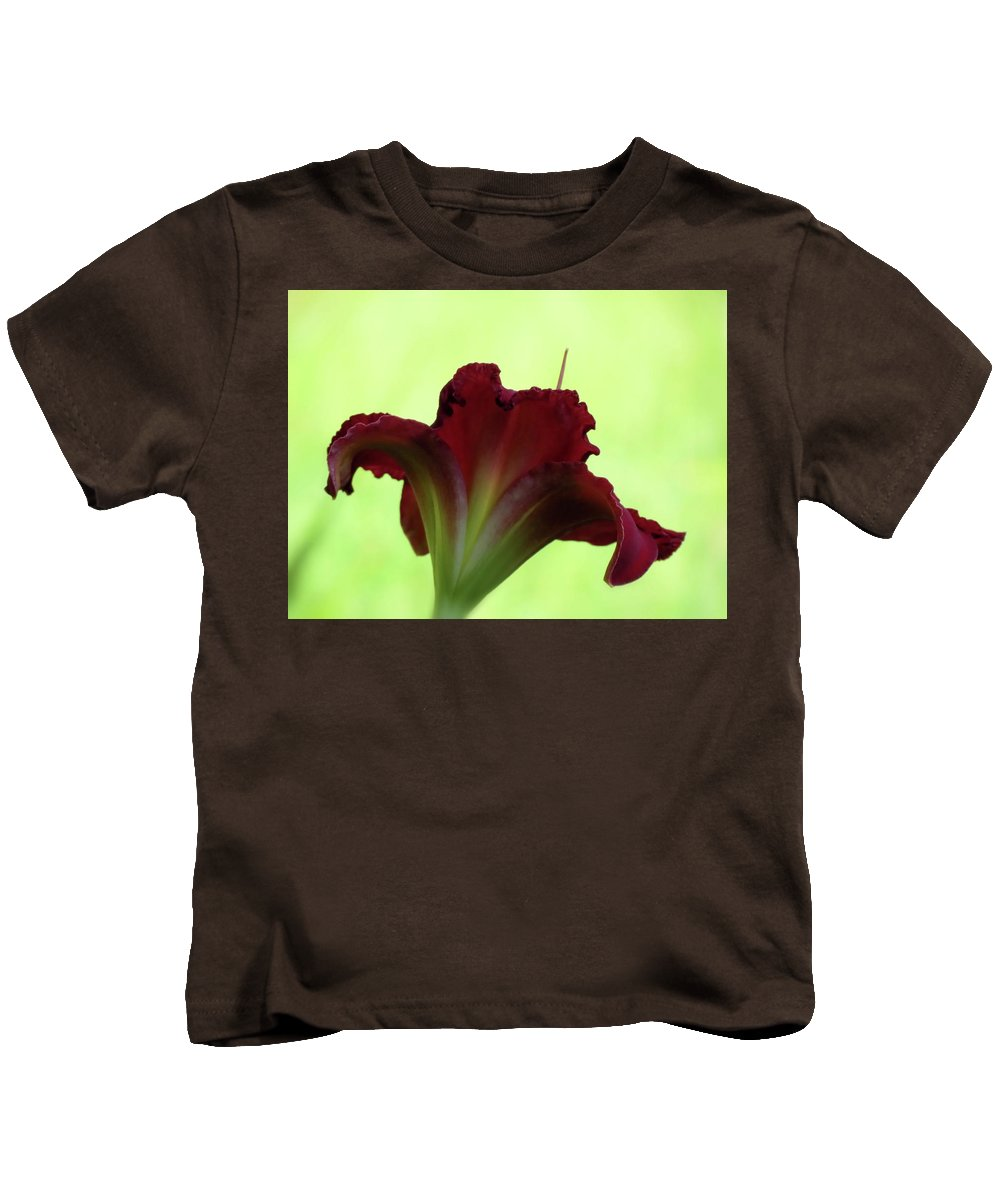 Indy Rhapsody Daylily Kids T-Shirt featuring the photograph Lily Red On Green by MTBobbins Photography