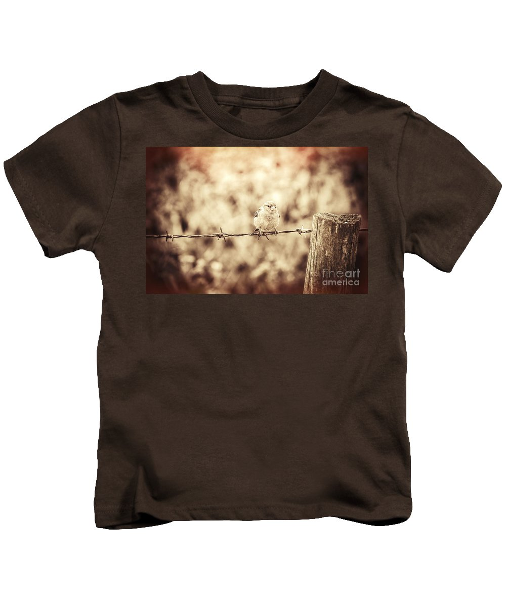 Sparrow Kids T-Shirt featuring the photograph Little Sparrow by Amanda Elwell