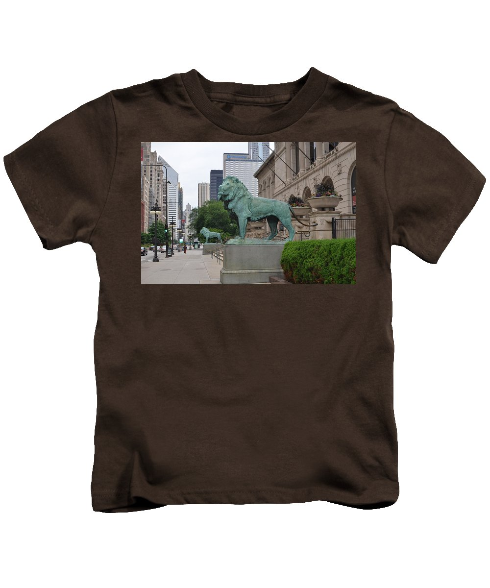 Chicago Art Institute Kids T-Shirt featuring the photograph Looking Down Michigan Avenue by Tammy Mutka