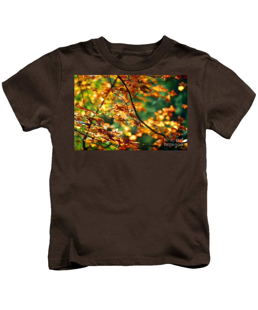 Fall Color Kids T-Shirt featuring the photograph Lost In Leaves by Kathy McClure
