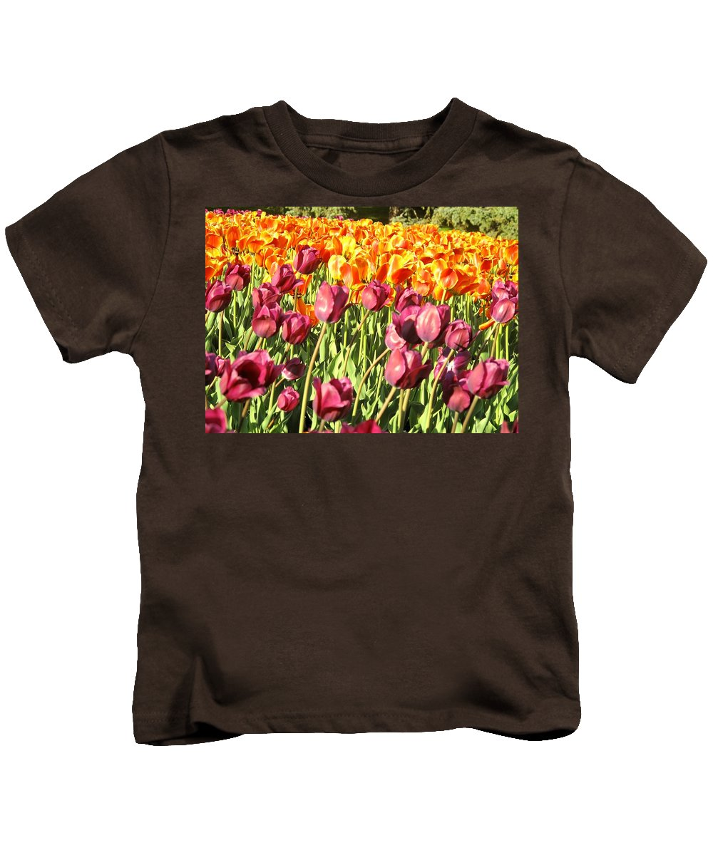 Tulips Kids T-Shirt featuring the photograph Lots Of Tulips by Ian MacDonald