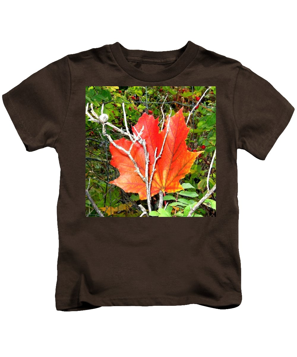 Autumn Kids T-Shirt featuring the photograph Maple Mania 6 by Will Borden