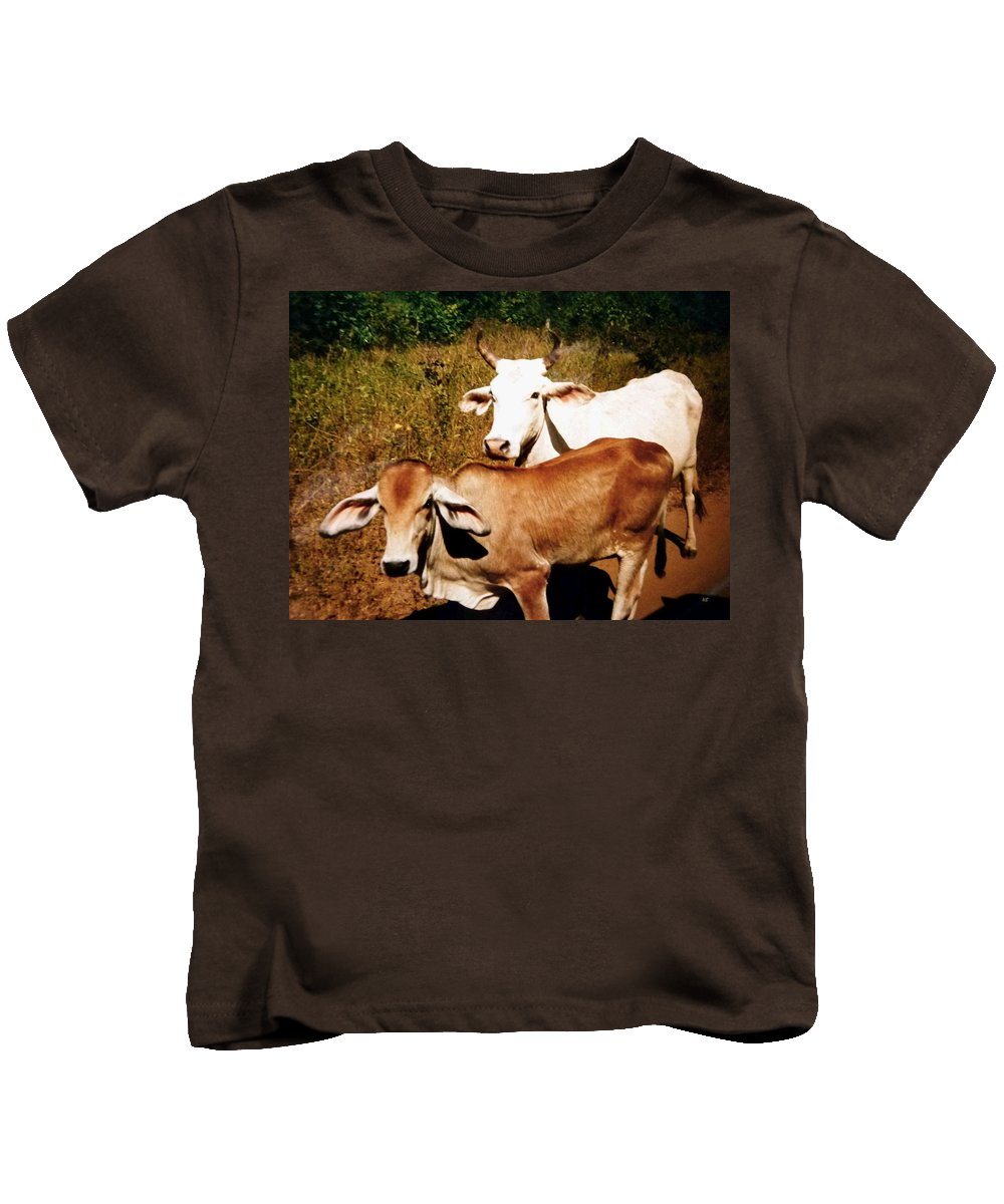 Mexico Kids T-Shirt featuring the photograph Mexican Cattle by Will Borden