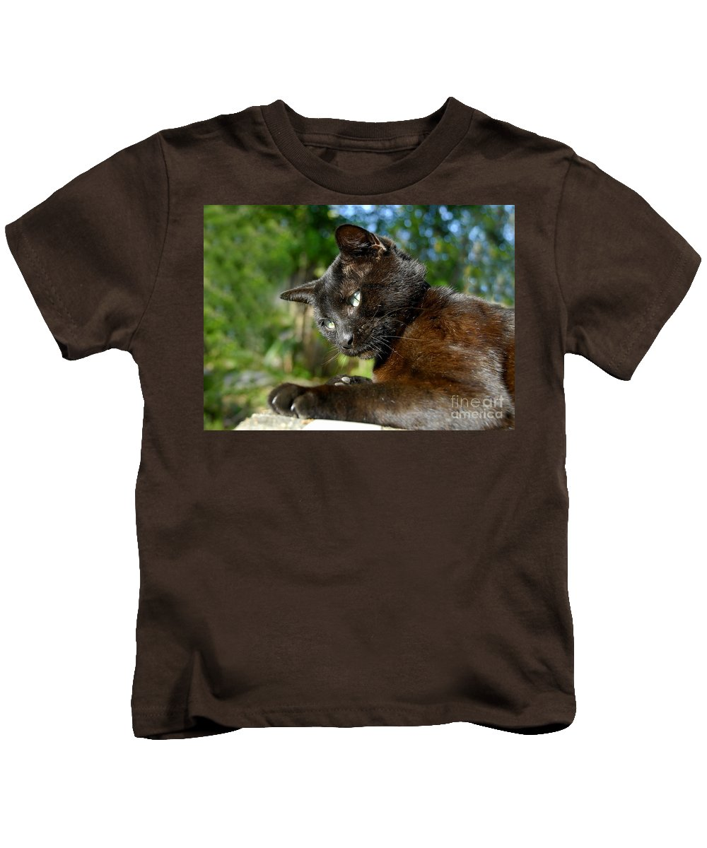 Cat Kids T-Shirt featuring the photograph Mr. Night by David Lee Thompson