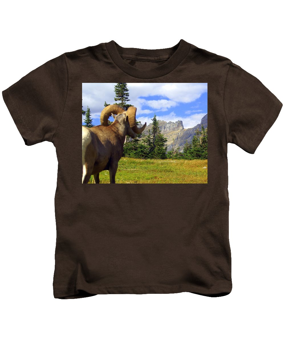 Glacier National Park Kids T-Shirt featuring the photograph My Kingdom by Marty Koch