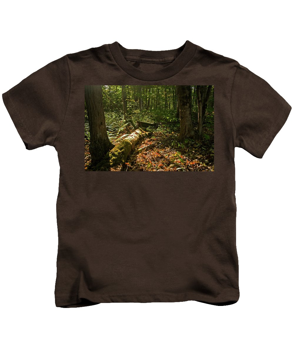 vermont Kids T-Shirt featuring the photograph Nature At Work by Paul Mangold