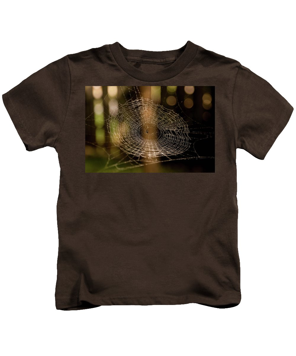 Spider Web Kids T-Shirt featuring the photograph Oh What Tangled Webs.... by James Fitterer