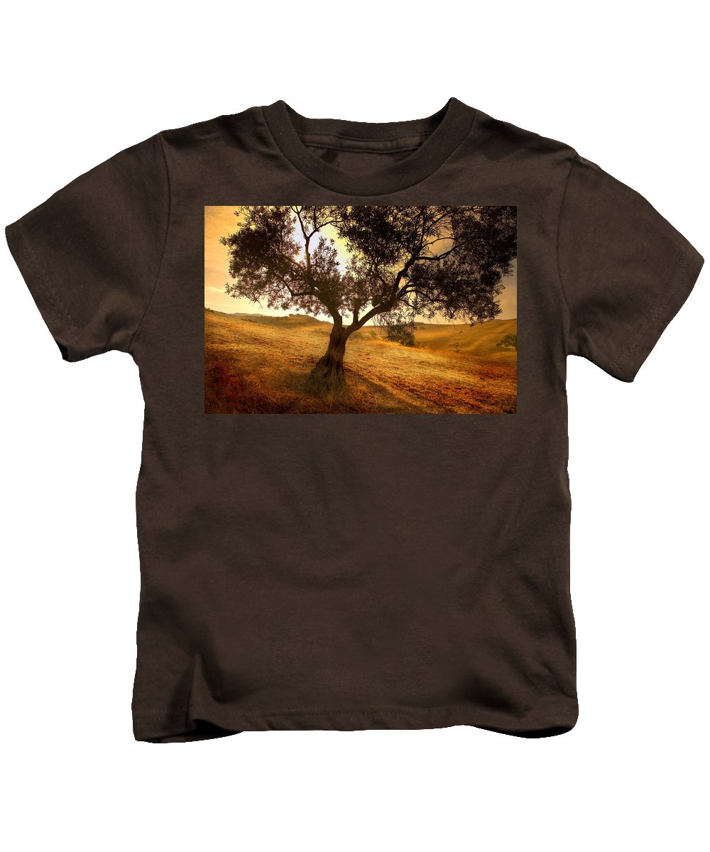 Landscape Kids T-Shirt featuring the photograph Olive Tree Dawn by Mal Bray