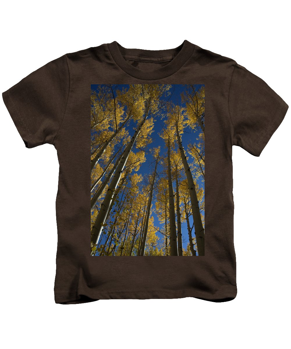 Fall Kids T-Shirt featuring the photograph Onward Toward The Sky by Jerry McElroy