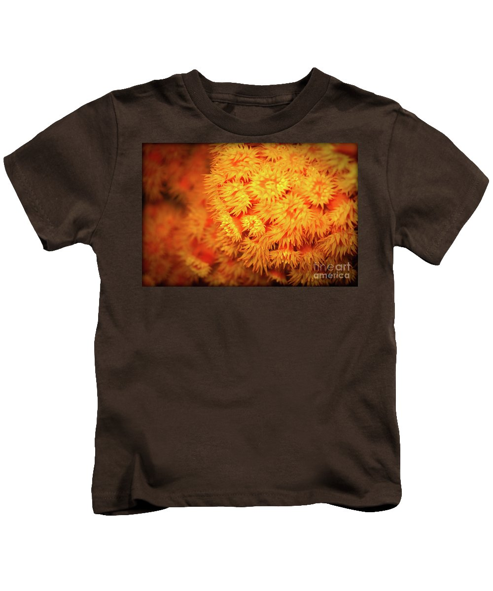 Orange Anemones Kids T-Shirt featuring the photograph Orange Anemones by Doug Sturgess