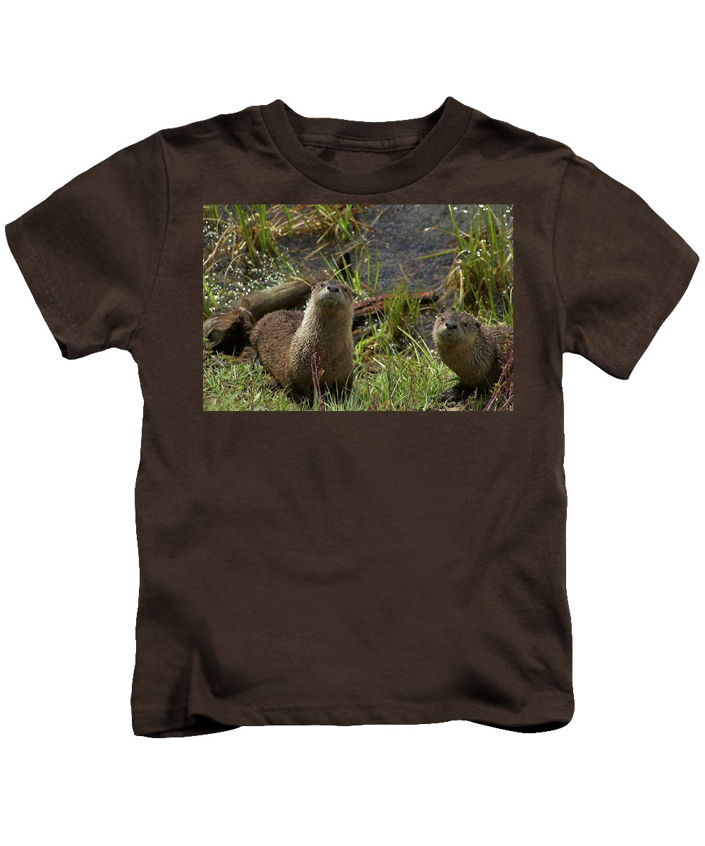 Otter Kids T-Shirt featuring the photograph Otters by Steve Stuller