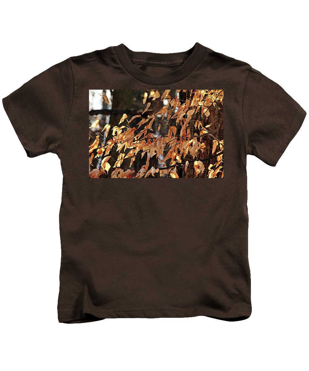 Beech Kids T-Shirt featuring the photograph Papery Beech Leaves by Debbie Oppermann