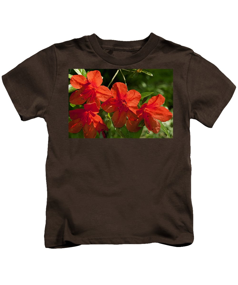 Flowers Kids T-Shirt featuring the photograph Pretty In Red by Gary Adkins