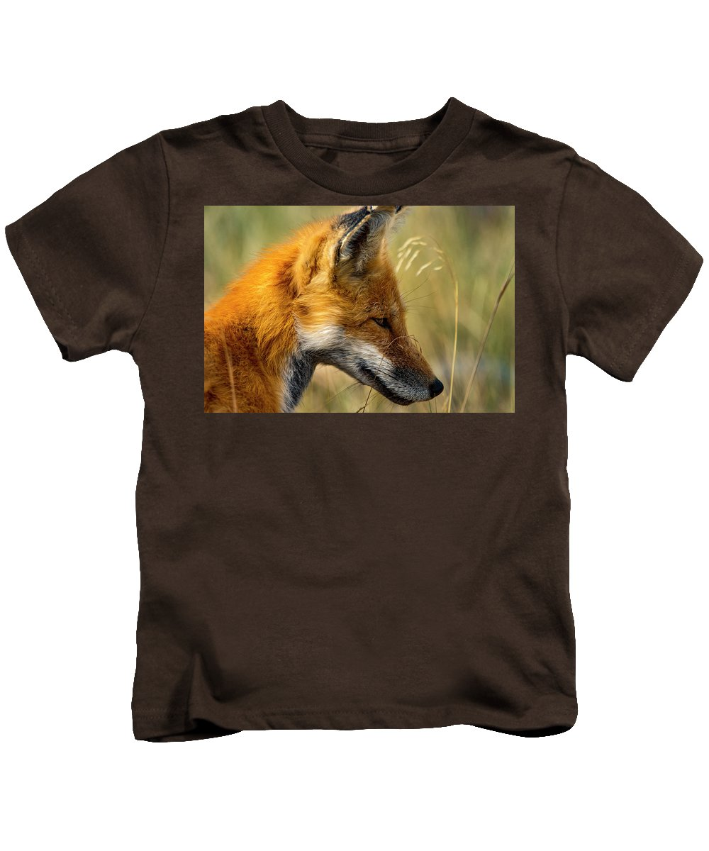 Kids T-Shirt featuring the photograph Red Fox by Sheryl Saxton