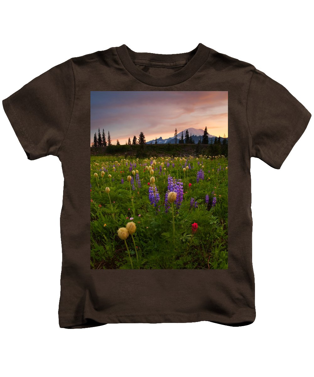 Anenome Kids T-Shirt featuring the photograph Red Sky Meadow by Mike Dawson