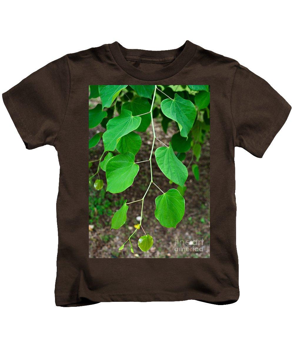 Redbud Kids T-Shirt featuring the photograph Redbud Green by Gary Richards