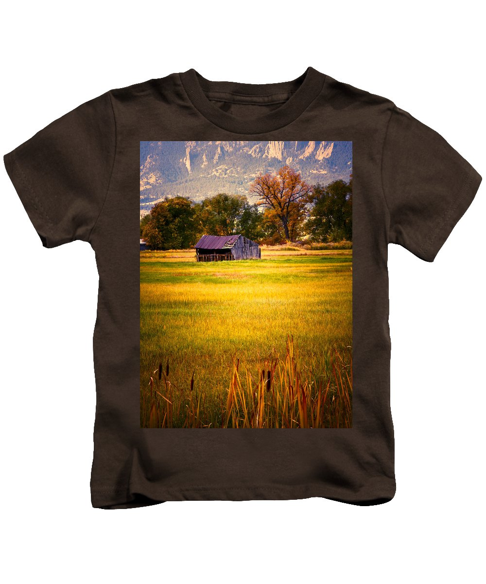 Shed Kids T-Shirt featuring the photograph Shed In Sunlight by Marilyn Hunt