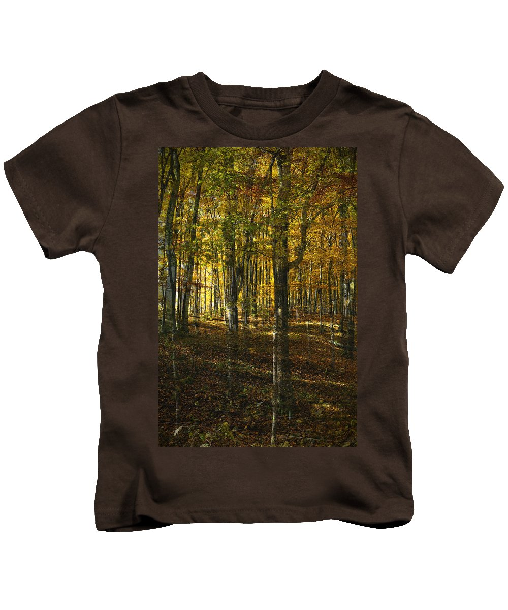 Woods Kids T-Shirt featuring the photograph Spirits In The Woods by Tim Nyberg