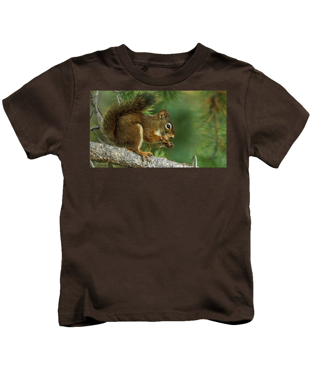 Squirrel Kids T-Shirt featuring the digital art Squirrel by Dorothy Binder