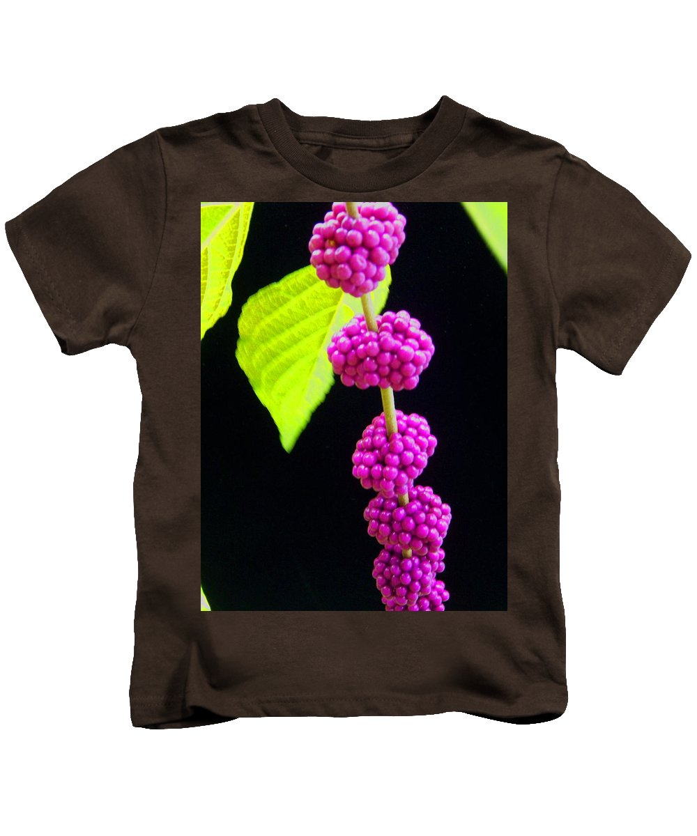 Flower Kids T-Shirt featuring the photograph Stalk Of Seeds by Laurie Paci