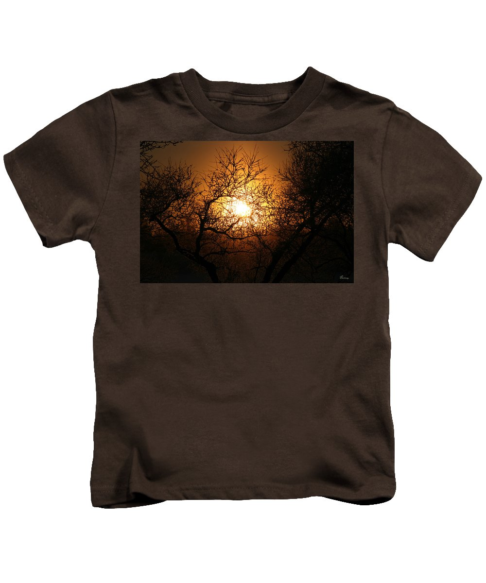 Sun Rise Trees Yellow Gold Plants Shine Colorful Bright Sky Kids T-Shirt featuring the photograph Sun Trees by Andrea Lawrence