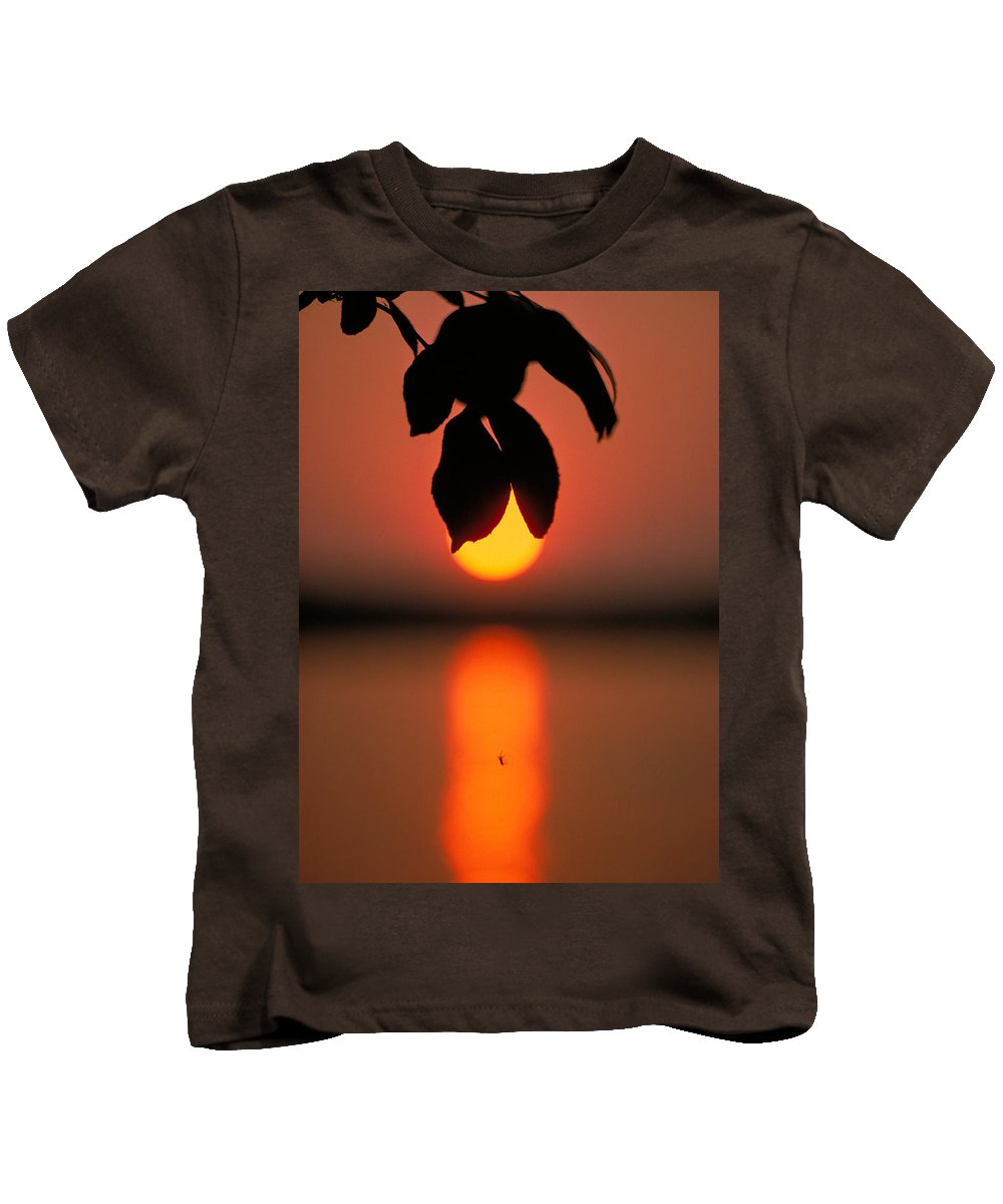 Sunset Kids T-Shirt featuring the photograph Sunset And Spider by Thomas Firak
