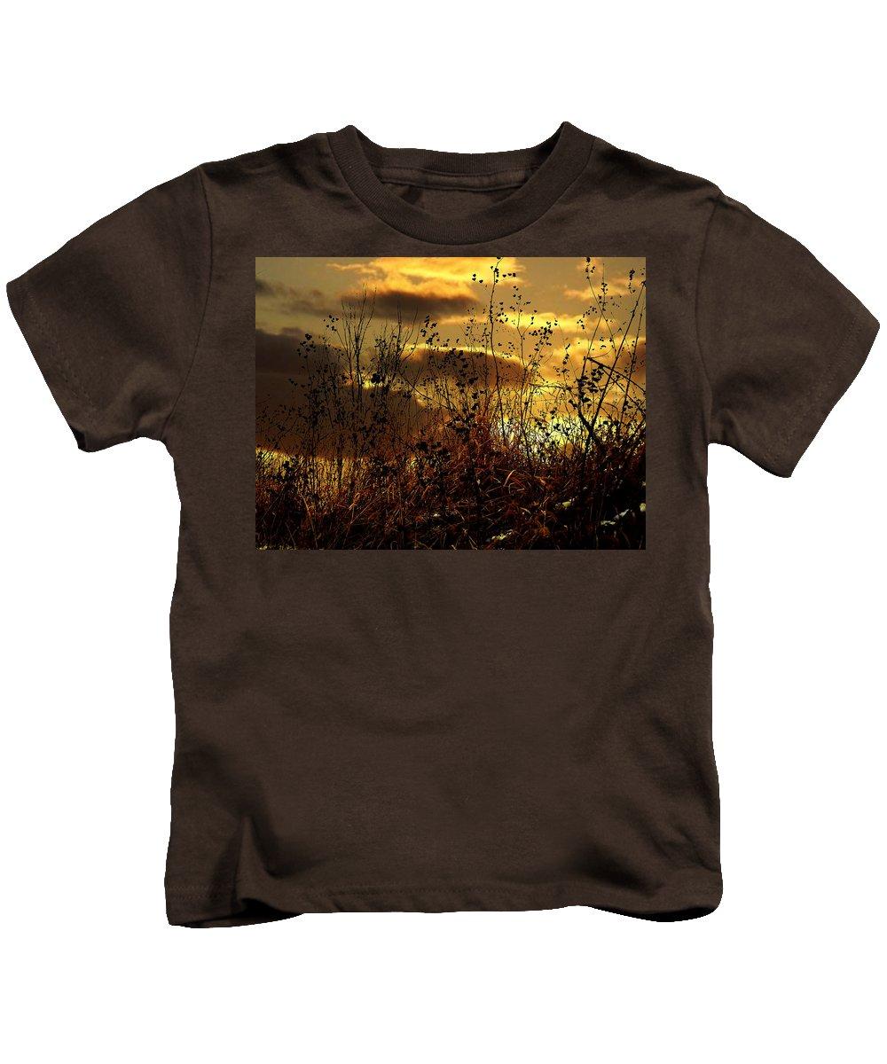 Grass Kids T-Shirt featuring the photograph Sunset Grasses by Julie Hamilton