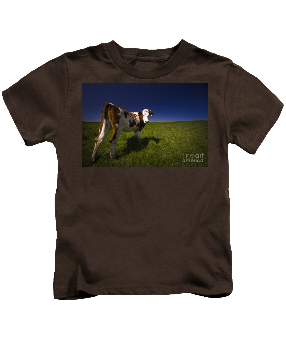 Cow Kids T-Shirt featuring the photograph The Funny Cow by Angel Ciesniarska