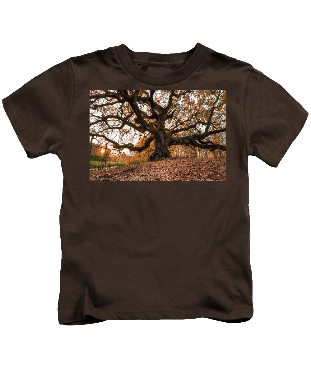 Great Kids T-Shirt featuring the photograph The Great Oak by Matteo Viviani