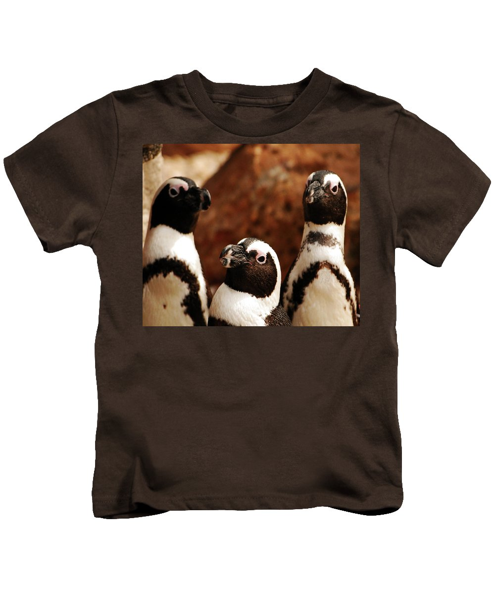 Penguins Kids T-Shirt featuring the photograph The Three Amigos by Lori Tambakis