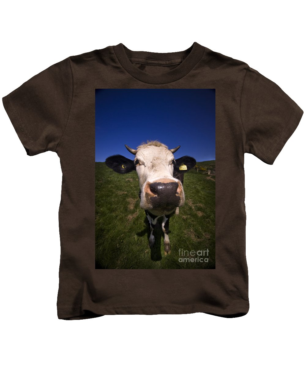 Cow Kids T-Shirt featuring the photograph The Wideangled Cow by Angel Tarantella