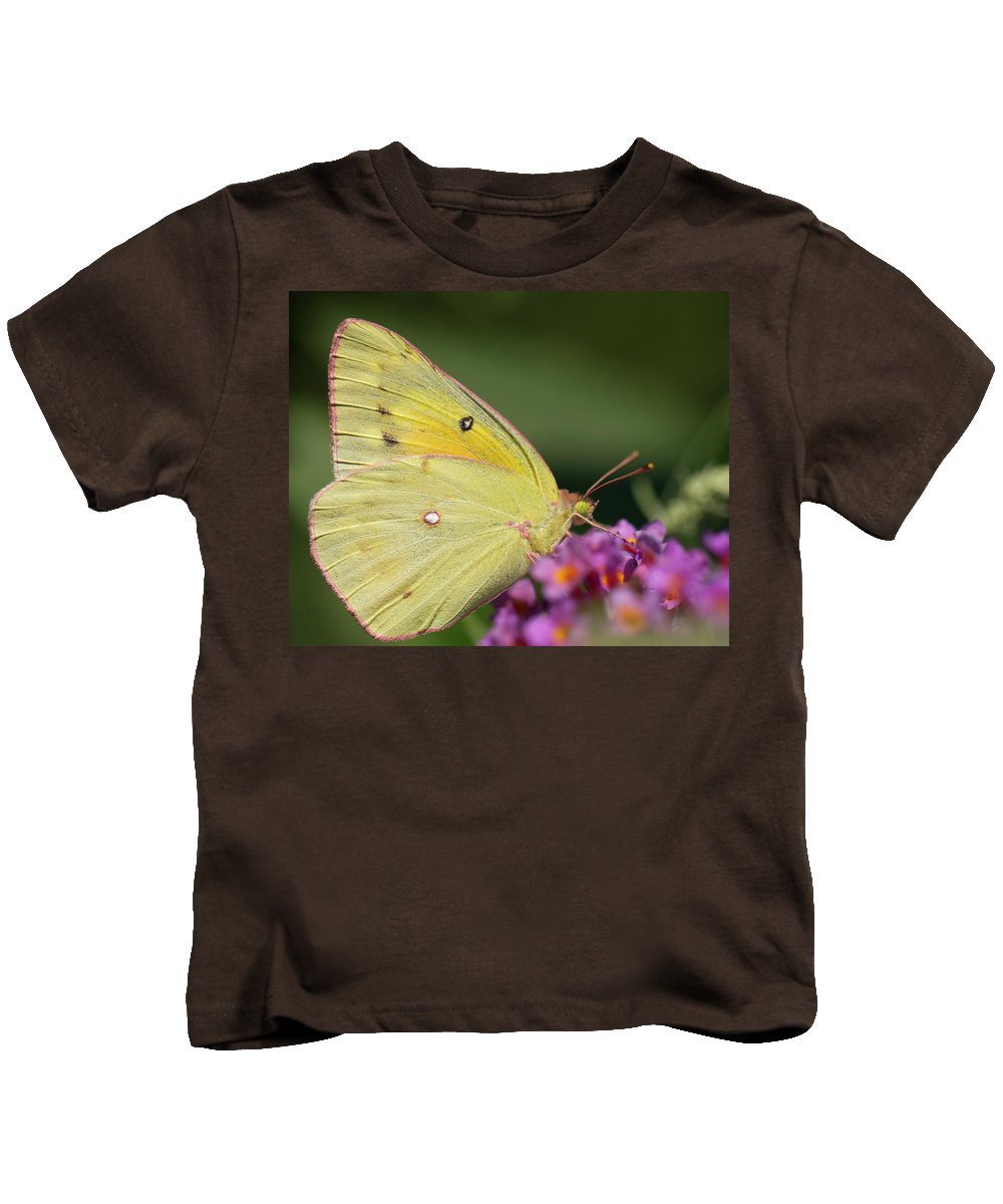 Butterfly Kids T-Shirt featuring the photograph Tickled Pink by Shelley Neff