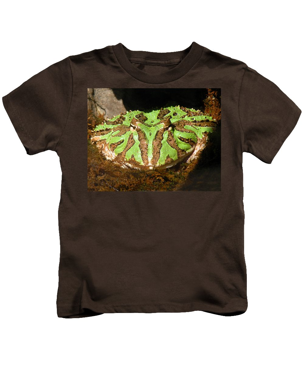 Toad Kids T-Shirt featuring the photograph Toad With Green Stripes by William Bitman