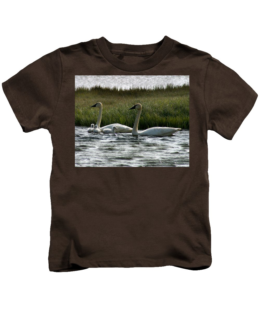 Swans Kids T-Shirt featuring the photograph Tundra Swans And Cygents by Anthony Jones