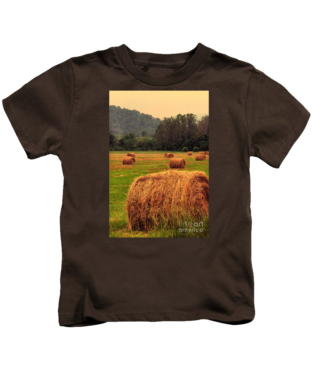 Virginia Kids T-Shirt featuring the photograph Virginia Evening by Thomas R Fletcher