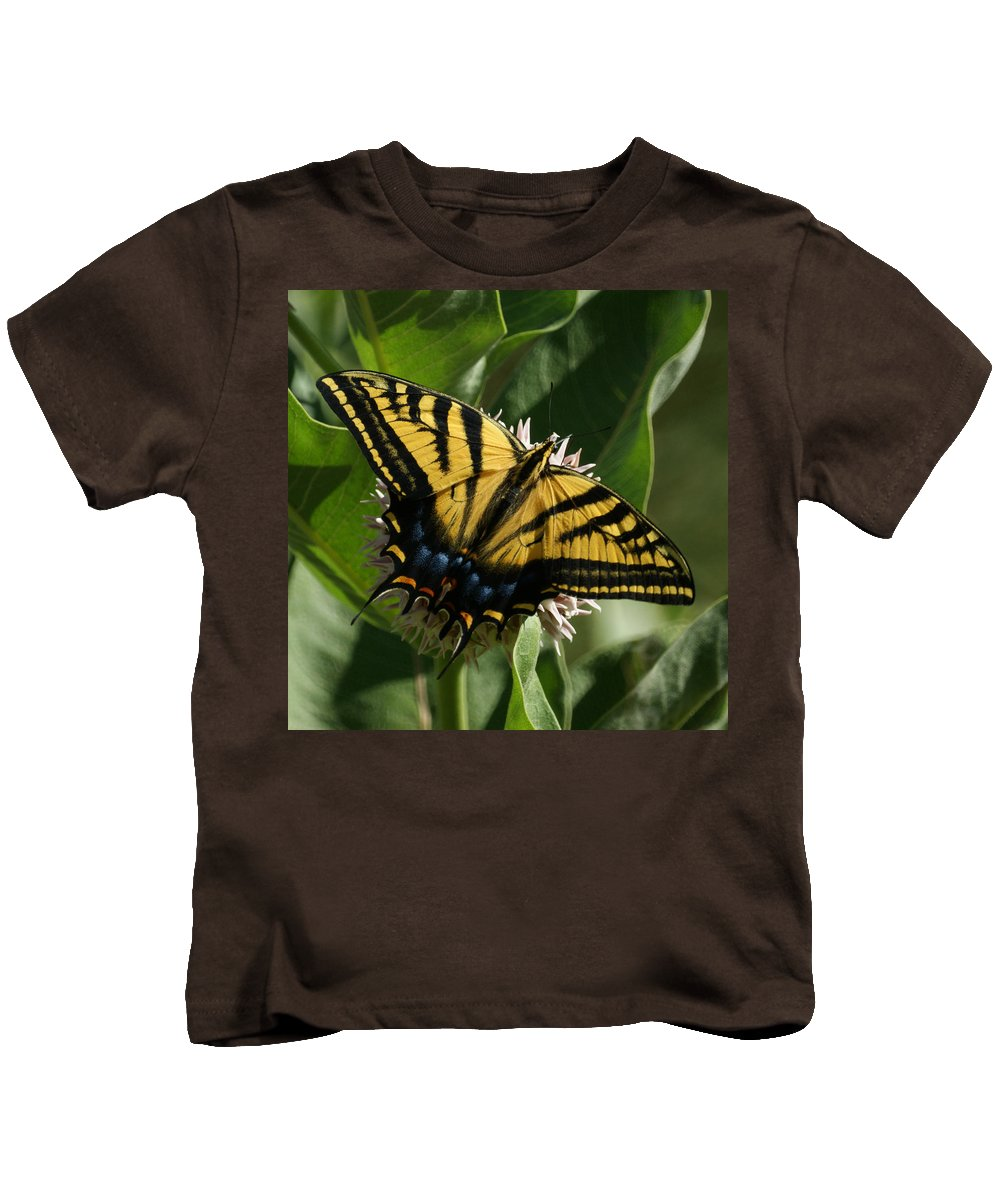 Bugs Kids T-Shirt featuring the photograph Western Tiger Swallowtail 2 by Ernie Echols