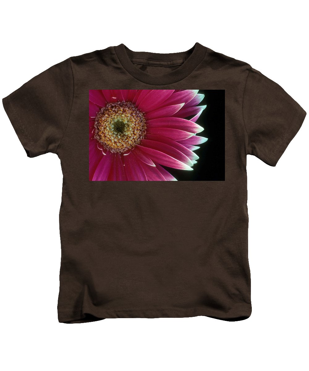 Gerber Daisy Kids T-Shirt featuring the photograph White Tipped Gerber by Laurie Paci