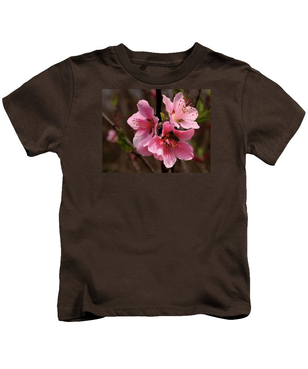 Cherry Kids T-Shirt featuring the photograph Wild Cherry Blossom by Grant Groberg