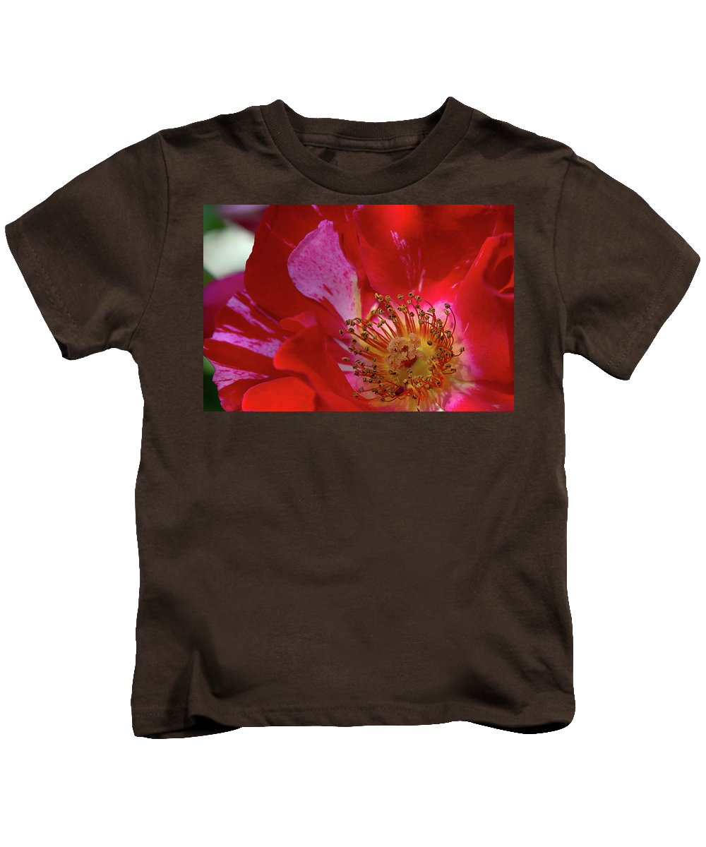 Rose Kids T-Shirt featuring the photograph Wild Rose by Phyllis Denton