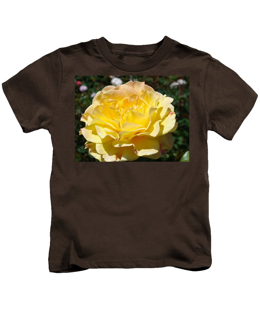 Rose Kids T-Shirt featuring the photograph Yellow Rose Sunlit Summer Roses Flowers Art Prints Baslee Troutman by Baslee Troutman