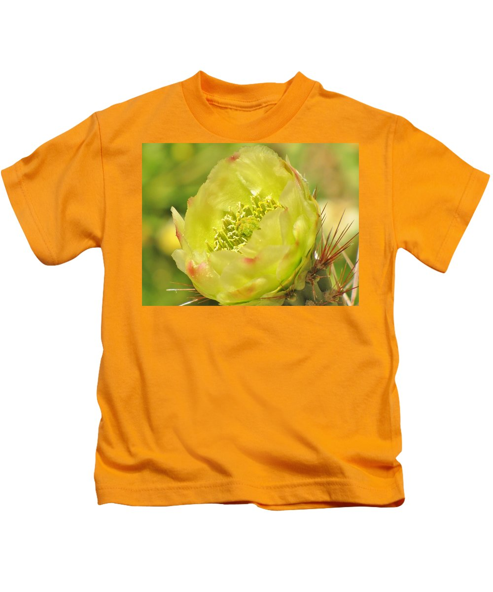 Cactus Flower Kids T-Shirt featuring the photograph Cactus Flower by Michelle Cassella