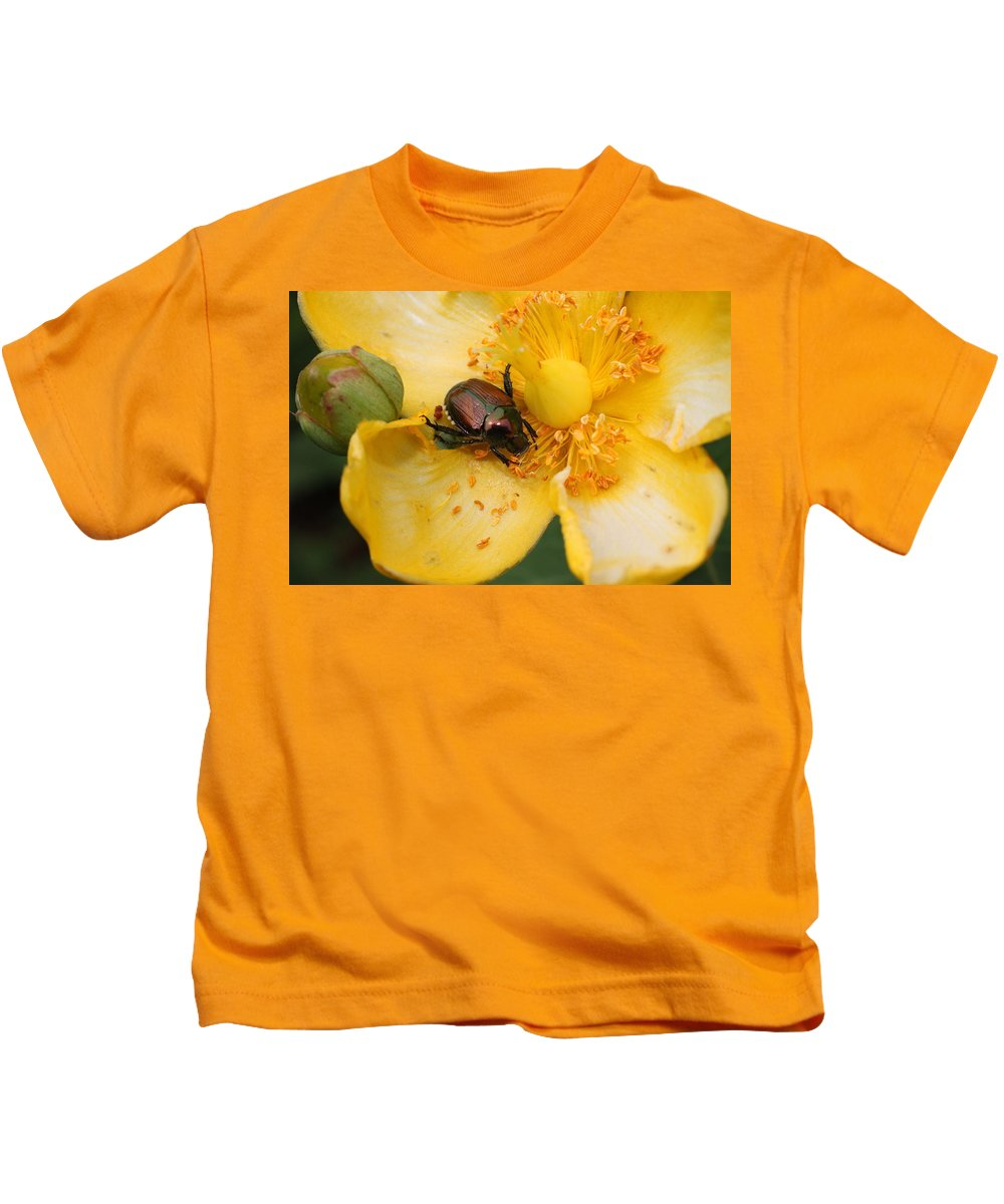 Yellow Kids T-Shirt featuring the photograph All You Can Eat... by David Mayeau