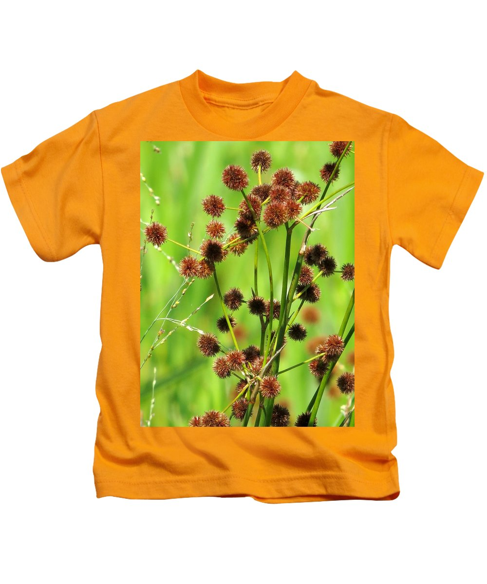 Bur-reed Kids T-Shirt featuring the photograph Bur-reed by Zina Stromberg