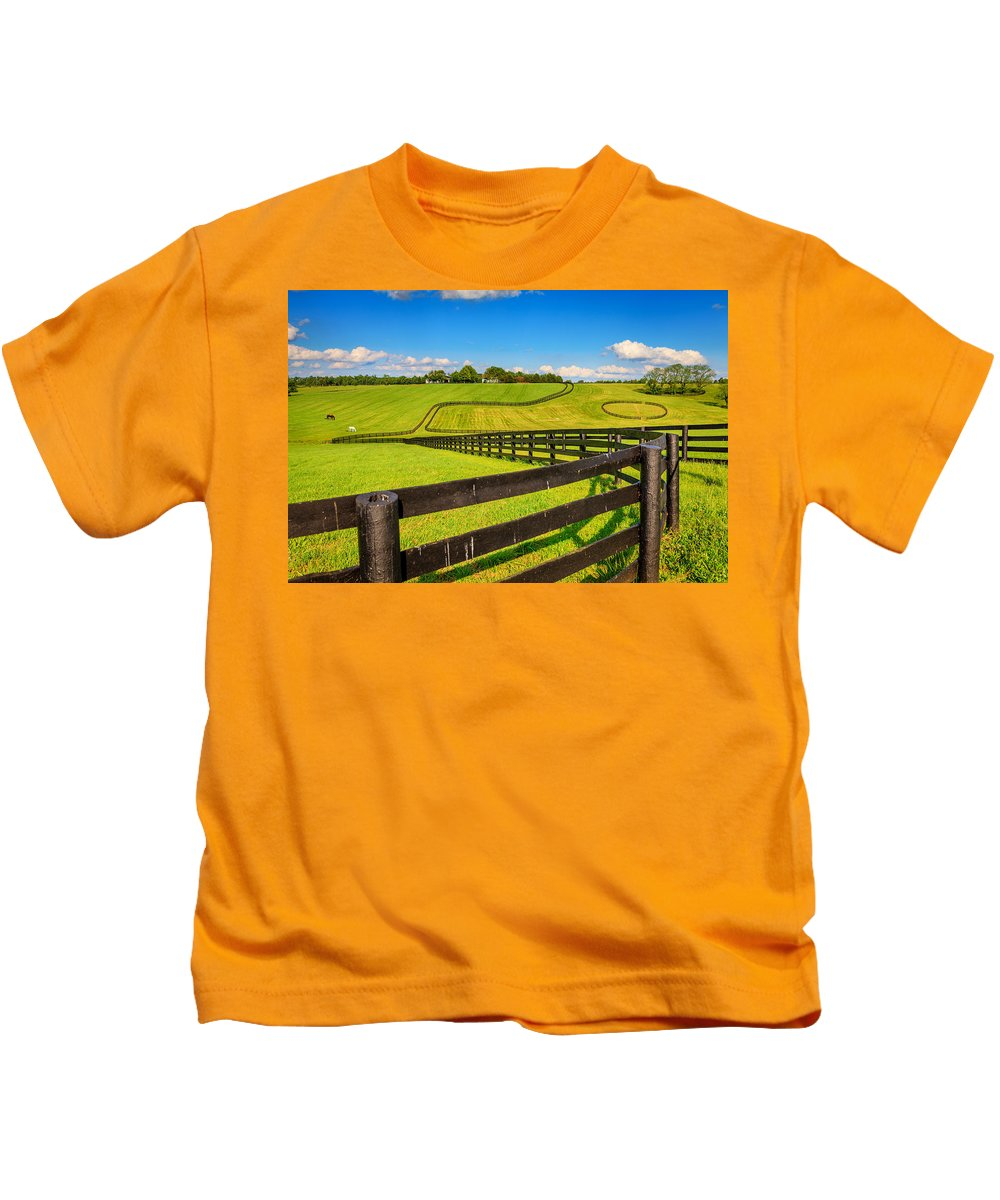 Farm Kids T-Shirt featuring the photograph Horse Farm Fences by Alexey Stiop