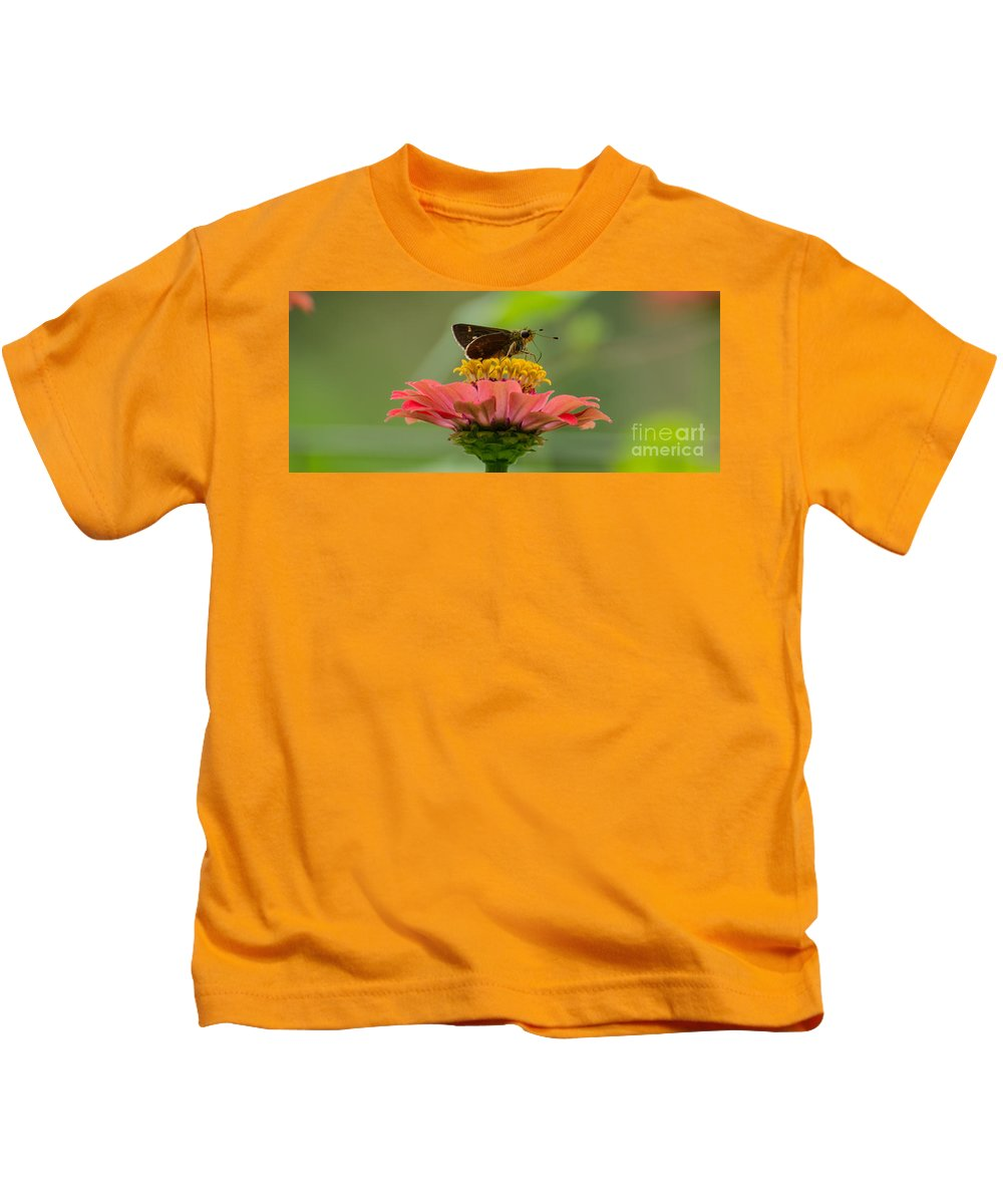 Insect Kids T-Shirt featuring the photograph Little Glassywing Skipper Butterfly by Donna Brown