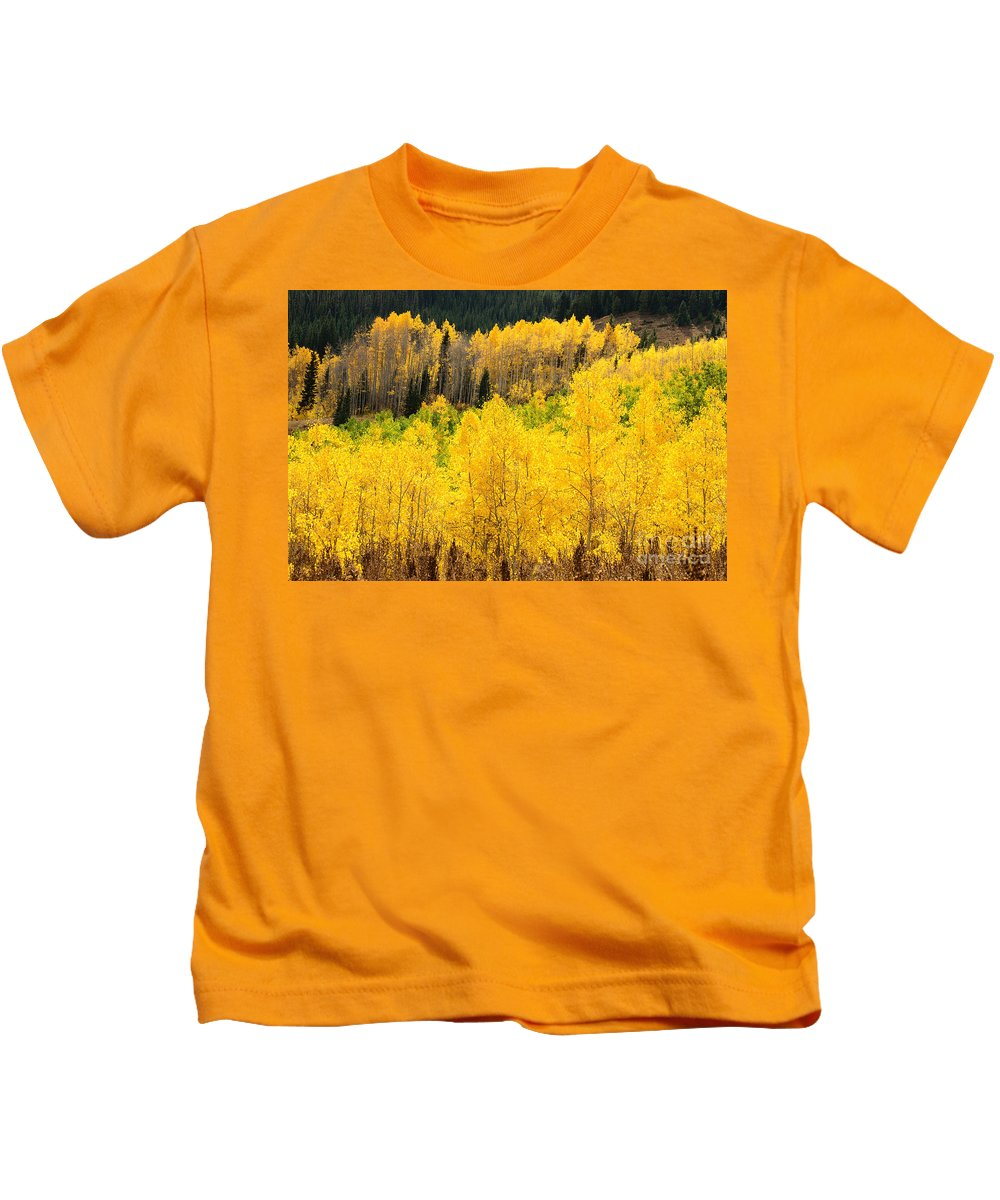 Tree Kids T-Shirt featuring the photograph Patterns Aglow by Kelly Black
