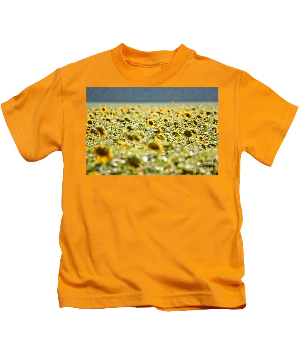 Sunflowers Kids T-Shirt featuring the photograph Rain On The Sunflowers by Cheryl Baxter